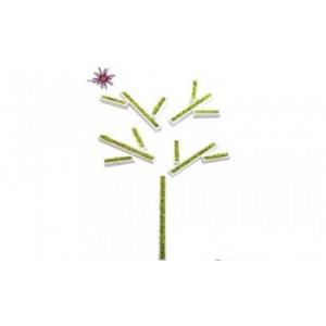Stiker arbre en Lichen stabilisé