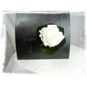 Verrine végétale aimantée rose blanche