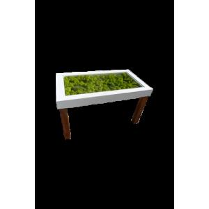 Table Basse Végétale Lichens