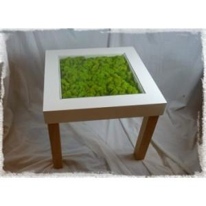 Table végétale lichen stabilisé