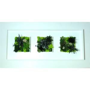 Tableau Végétal Led Mixte 100 x 40 cm