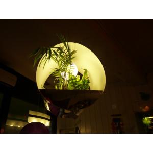 Suspension lumineuse végétale