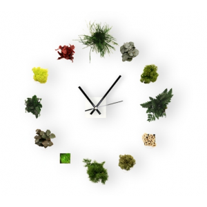 Horloge Green Time Small