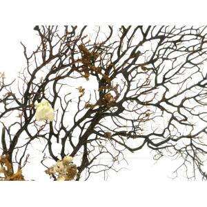 Gorgone L sur Pied Socle Blanc