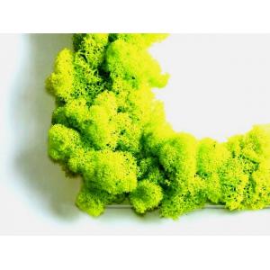ABCEDAIRE Végétal Premium