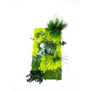 Tableau Végétal Forest 40 x 70 cm