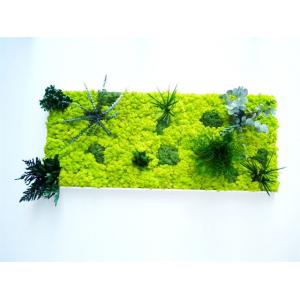 Tableau Végétal Forest 140 x 60 cm