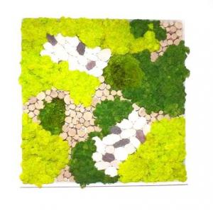 Tableau Végétal Mixte n°1 40 x 40 cm