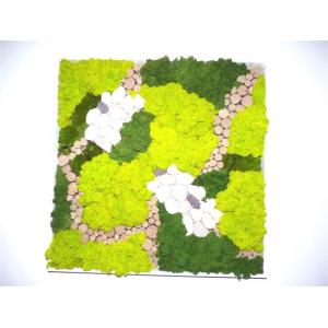 Tableau Végétal Mixte 60 x 60 cm