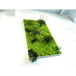 Tableau Végétal géant