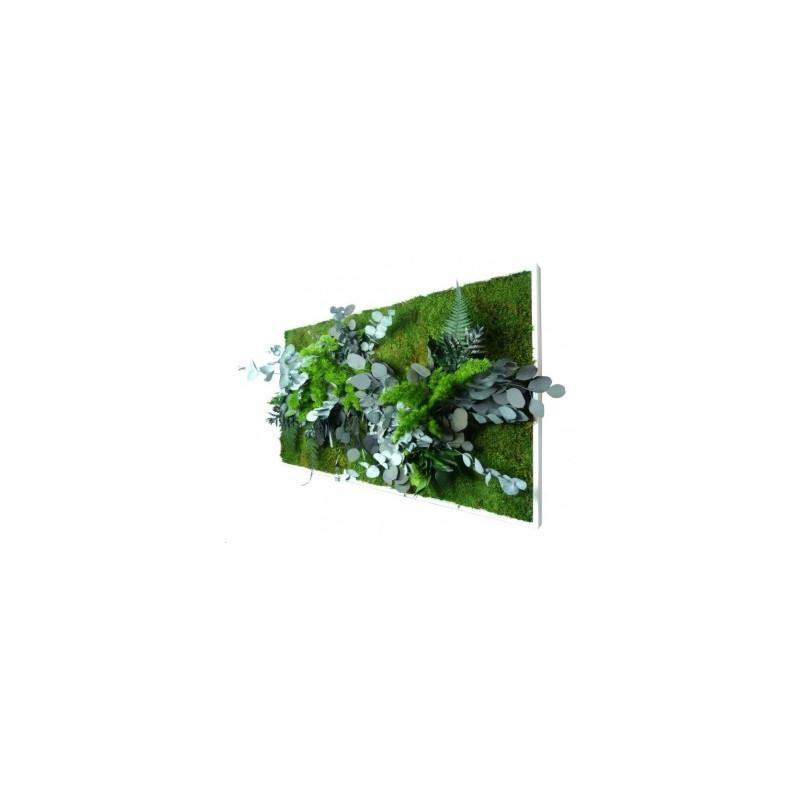 Cadre végétal stabilisé