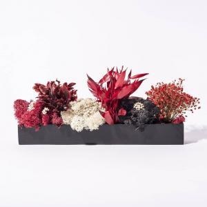 Barre Végétale Stabilisée 30 cm Mixte Rouge