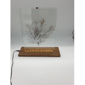 Lampe gorgone